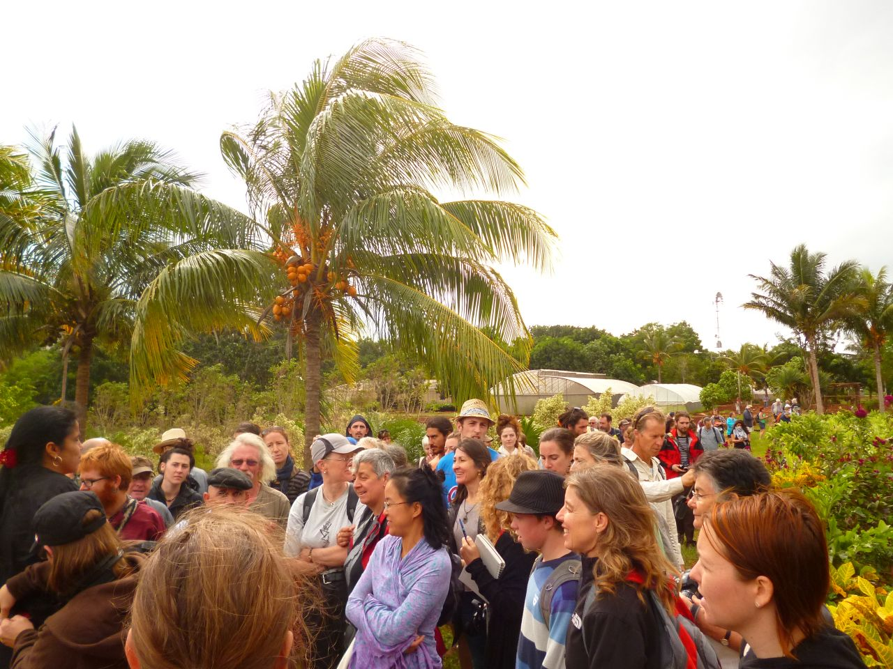 International Permaculture Convergence, Cuba