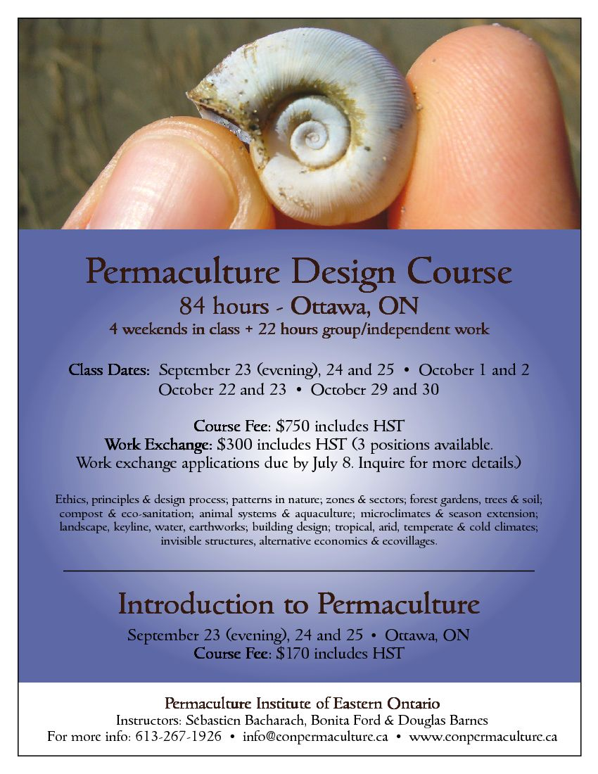 permaculture design course poster