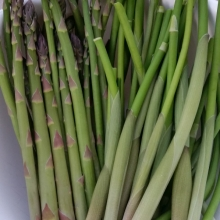 asparagus and Solomon's seal