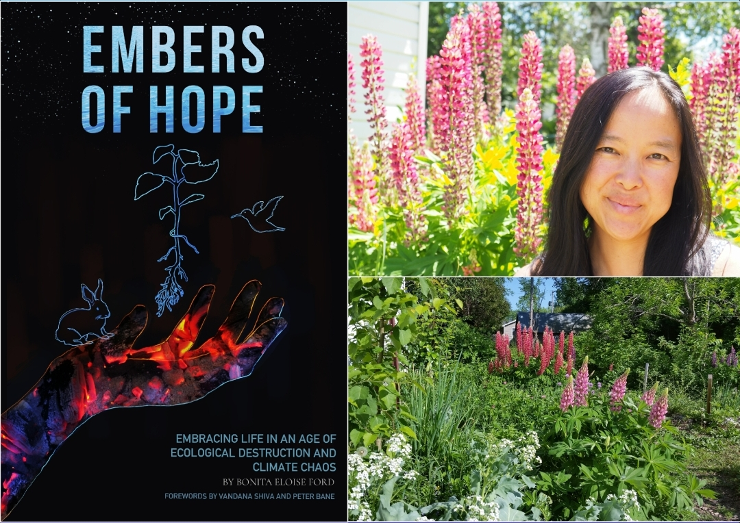 """Embers of Hope: Embracing Life in an Age of Ecological Destruction and Climate Chaos"" online workshop"